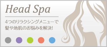 Head Spa 4つのリラクシングメニューで髪や地肌のお悩みを解決!